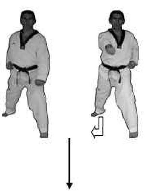 Segundo bloque técnico de tipo frontal hacia delante, correspondiente a la Taeguk Il Chang con sentido único de movimiento