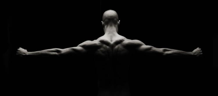 fibras musculares y entrenamiento de fuerza